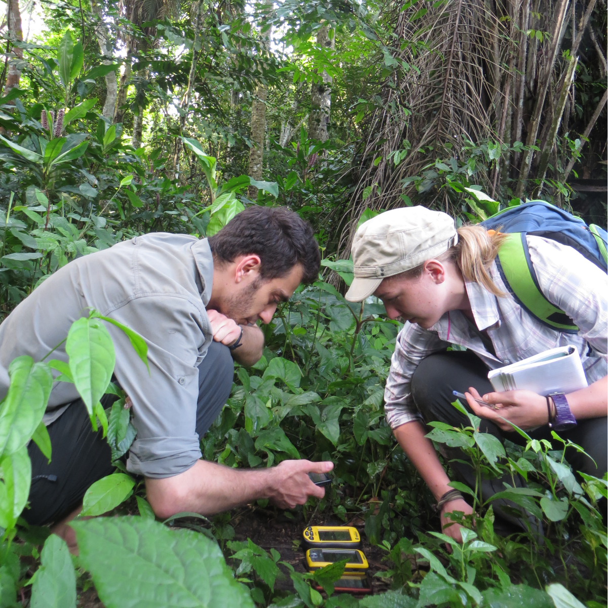 GPS signal in the rainforest?