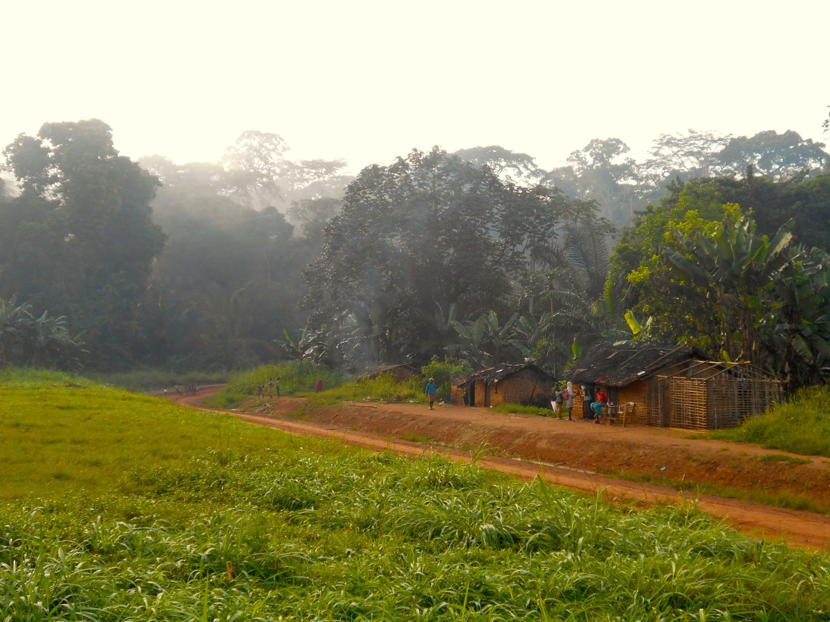 Forest People, Forest Elephants, and Forest Citizen Science in Cameroon