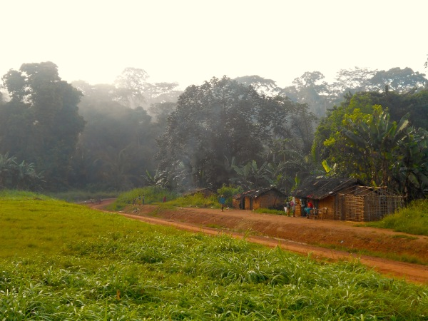 A Baka village near Lomié to the east of the Dja Biosphere Reserve