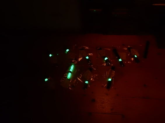 An artificial glow-worm at night!